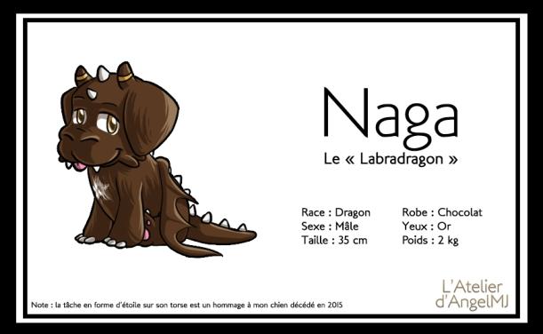nagapresentation